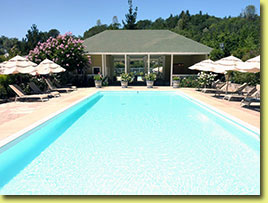 Meadowlark's Stately Pool