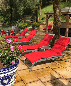 Comfortable lounge chairs a quarter way up a riparian woodland hill bedeck our upper veranda with sweeping views of the Calistoga Palisades