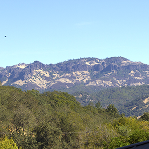View of the Calistoga Palisades from Meadowlark