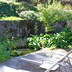 Terraced patio outside the Pond Room